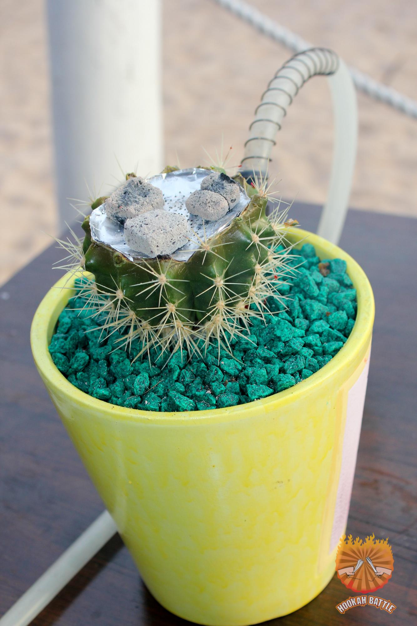 Hookah Cactus par Alexander Trofimo